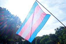 Image of the Transgender Pride Flag, with five horizontal stripes which are, in order, blue, pink, white, pink, and blue, flying in front of a bright sky.